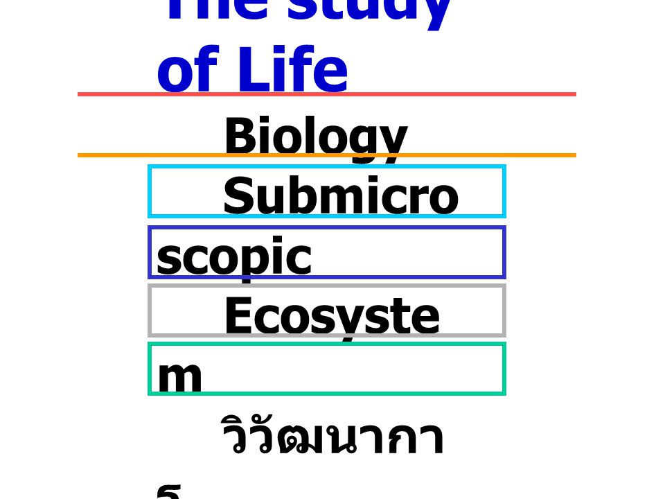 The study of Life Biology Submicroscopic Ecosystem วิวัฒนาการ