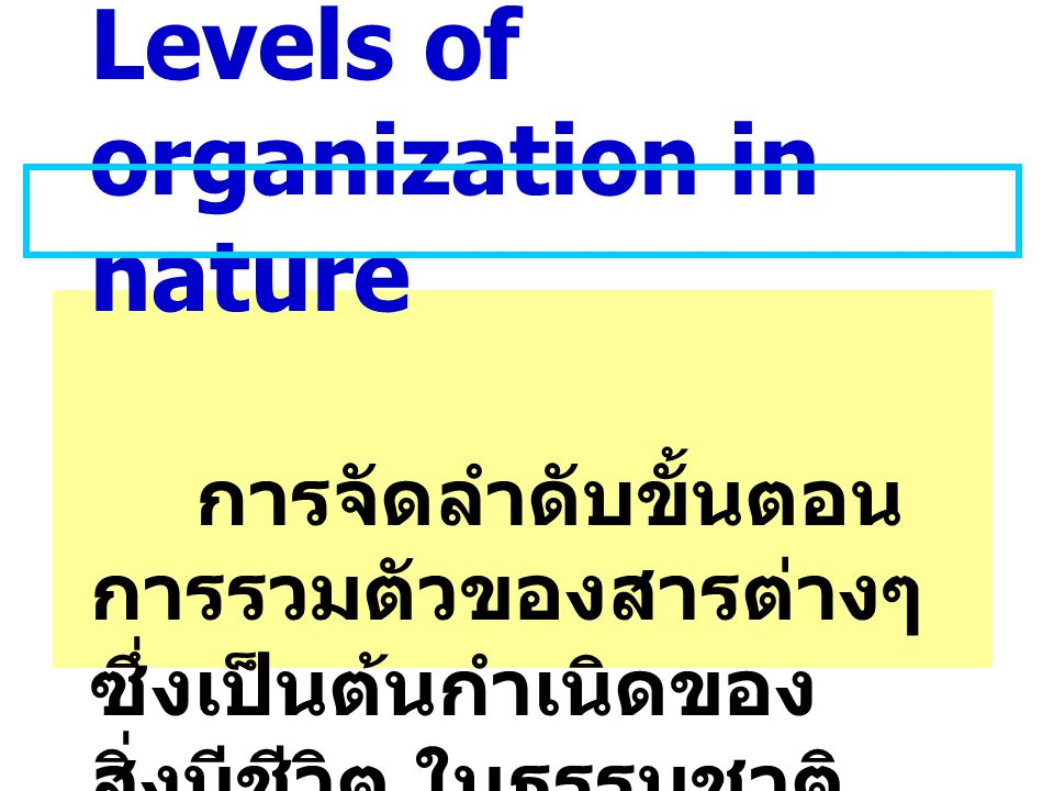 Levels of organization in nature