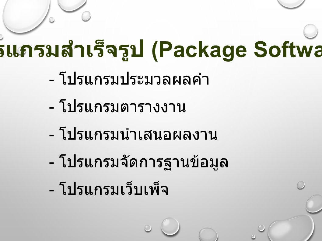 โปรแกรมสำเร็จรูป (Package Software)