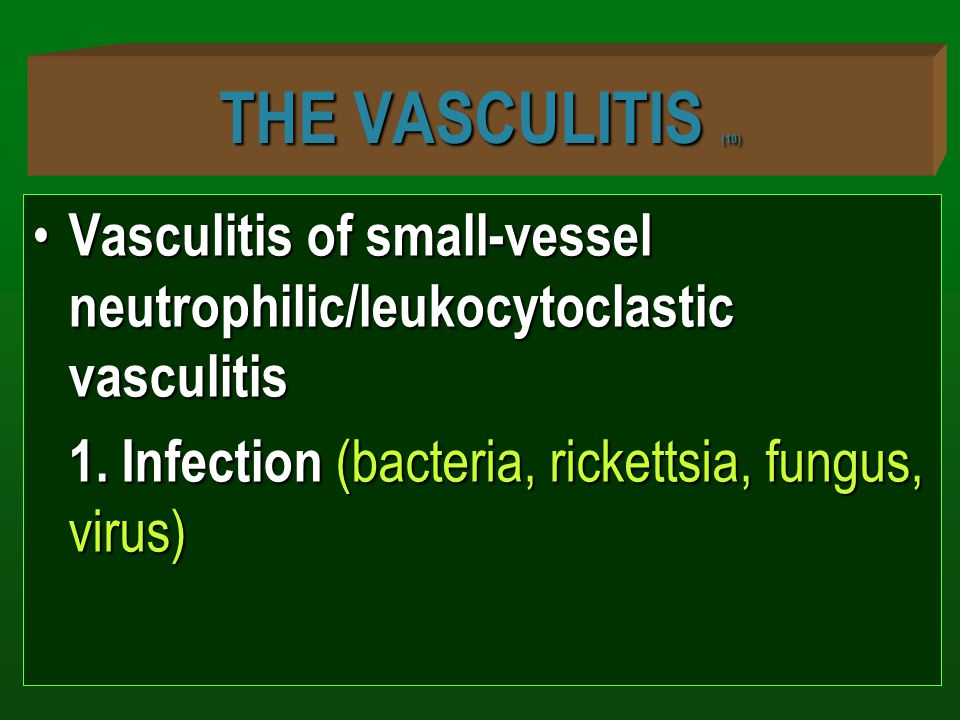 THE VASCULITIS (10) Vasculitis of small-vessel neutrophilic/leukocytoclastic vasculitis.
