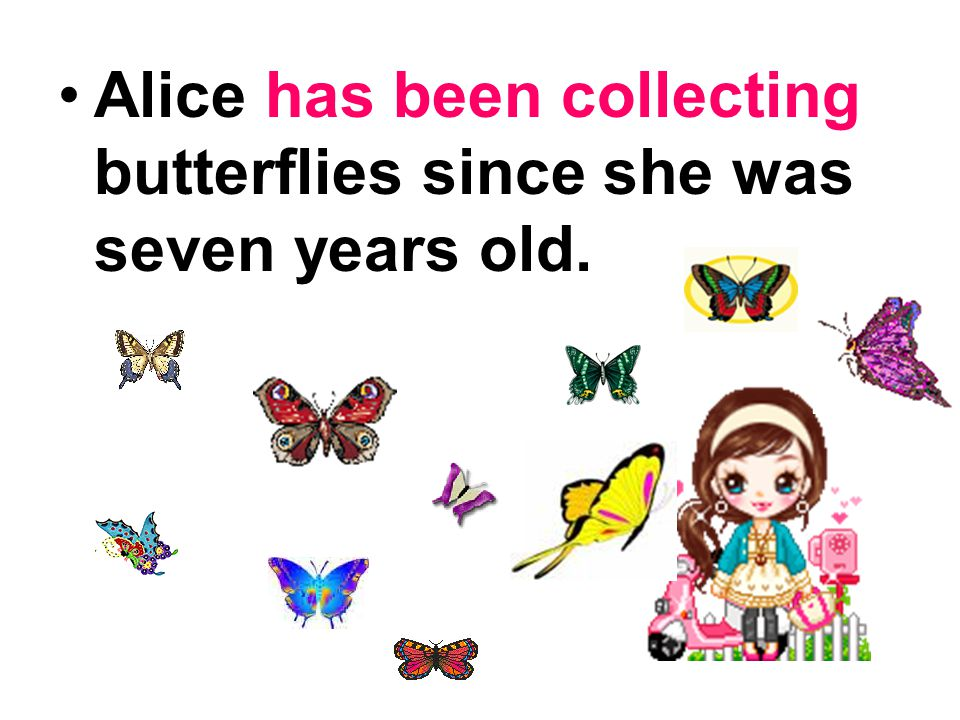 Alice has been collecting butterflies since she was seven years old.