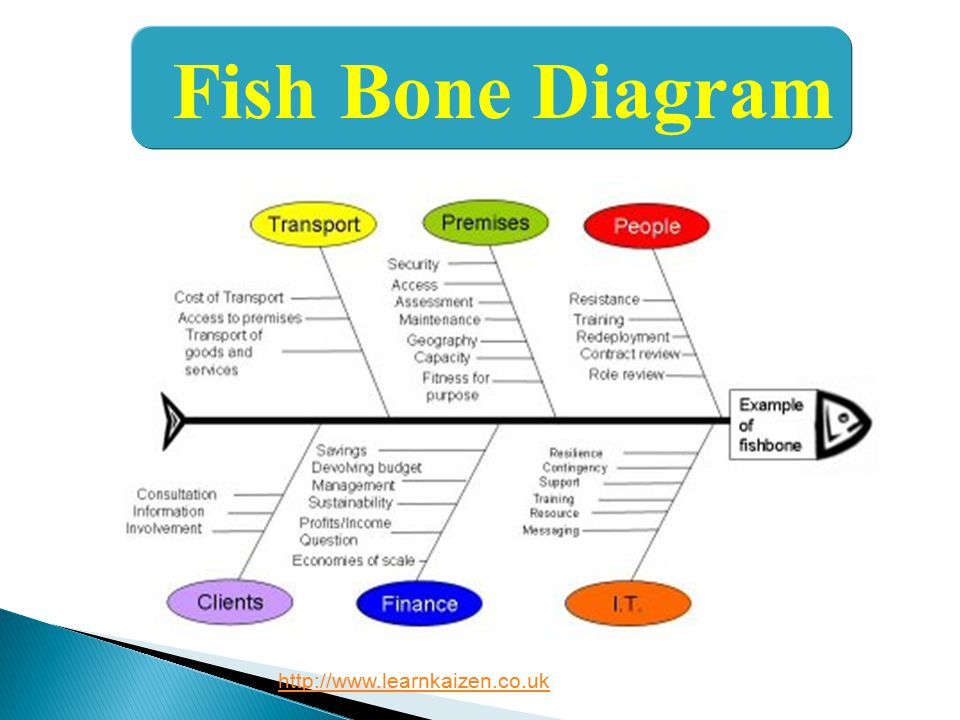 Fish Bone Diagram http://www.learnkaizen.co.uk