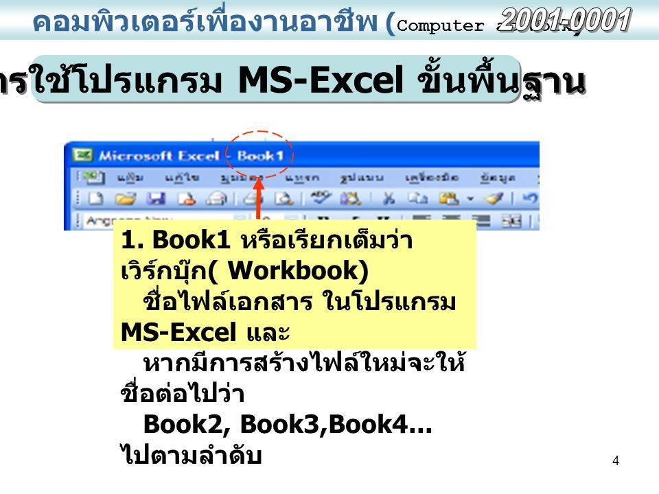 การใช้โปรแกรม MS-Excel ขั้นพื้นฐาน