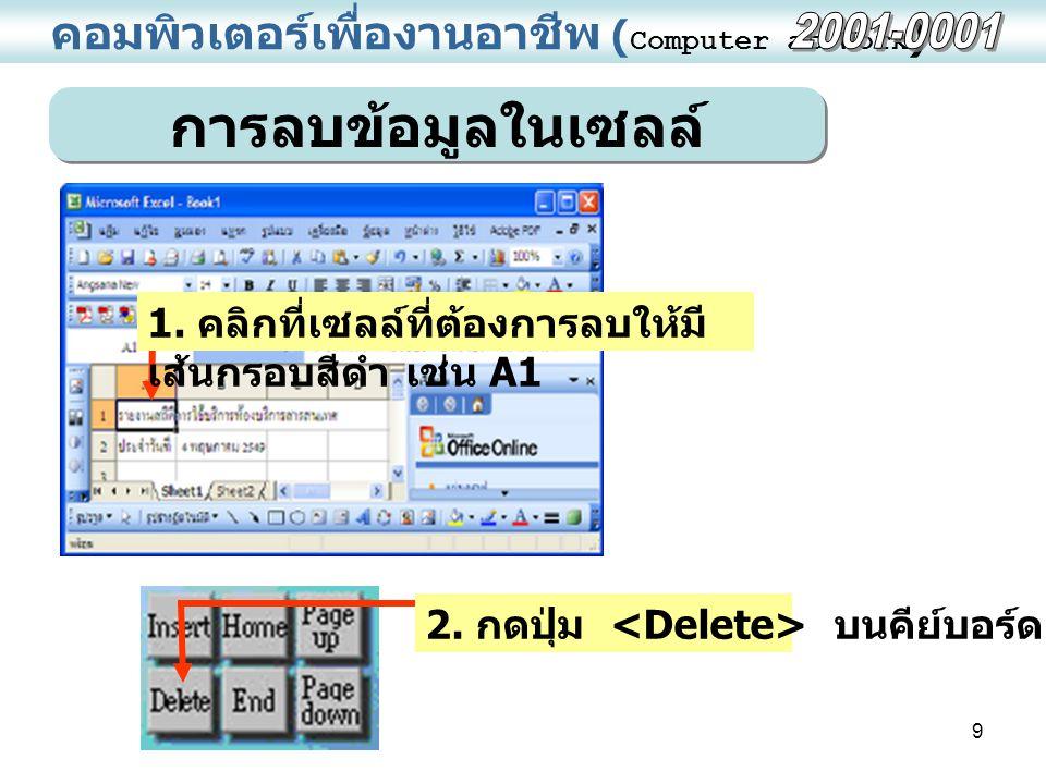 คอมพิวเตอร์เพื่องานอาชีพ (Computer at Work)
