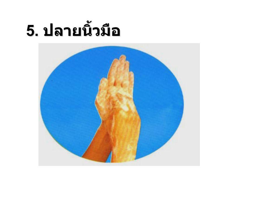 5. ปลายนิ้วมือ