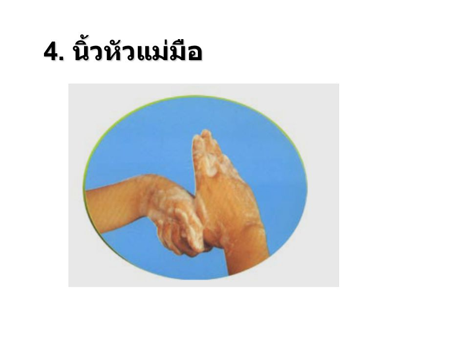 4. นิ้วหัวแม่มือ