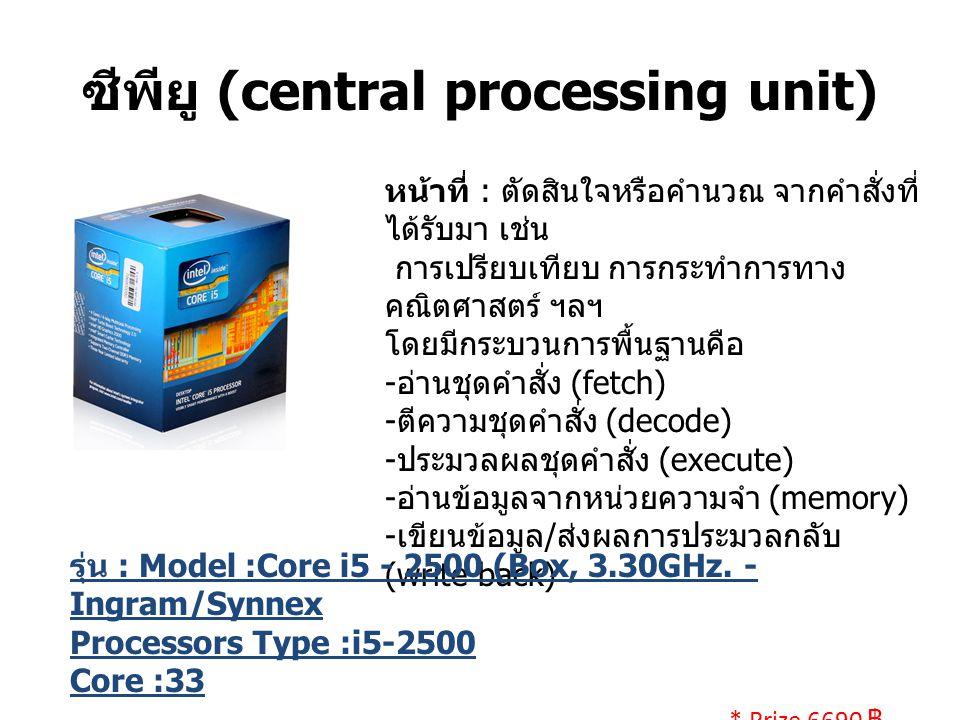 ซีพียู (central processing unit)