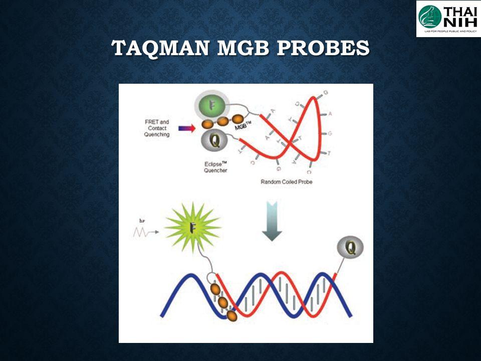 TaqMan MGB probes