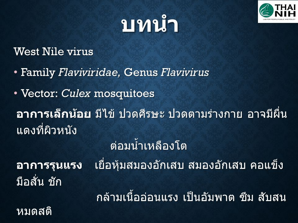 บทนำ West Nile virus Family Flaviviridae, Genus Flavivirus