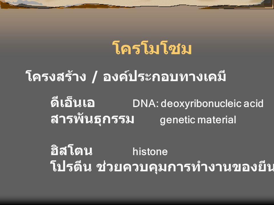 โครโมโซม โครงสร้าง / องค์ประกอบทางเคมี