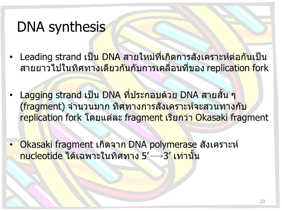 DNA synthesis Leading strand เป็น DNA สายใหม่ที่เกิดการสังเคราะห์ต่อกันเป็นสายยาวไปในทิศทางเดียวกันกับการเคลื่อนที่ของ replication fork.