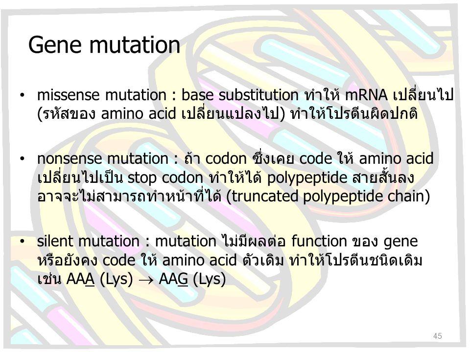 Gene mutation missense mutation : base substitution ทำให้ mRNA เปลี่ยนไป (รหัสของ amino acid เปลี่ยนแปลงไป) ทำให้โปรตีนผิดปกติ
