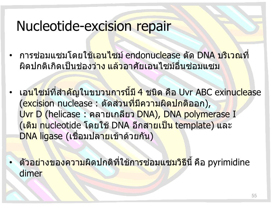 Nucleotide-excision repair