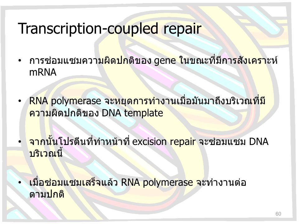 Transcription-coupled repair
