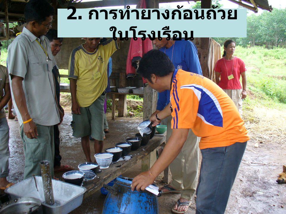 2. การทำยางก้อนถ้วยในโรงเรือน
