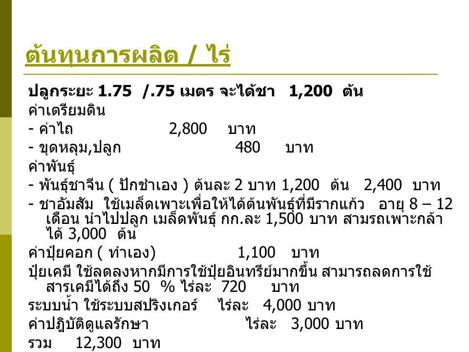 ต้นทุนการผลิต / ไร่ ปลูกระยะ 1.75 /.75 เมตร จะได้ชา 1,200 ต้น