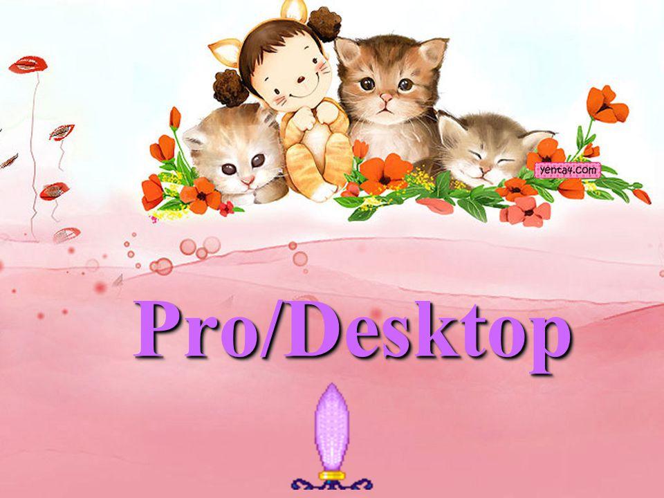 Pro/Desktop