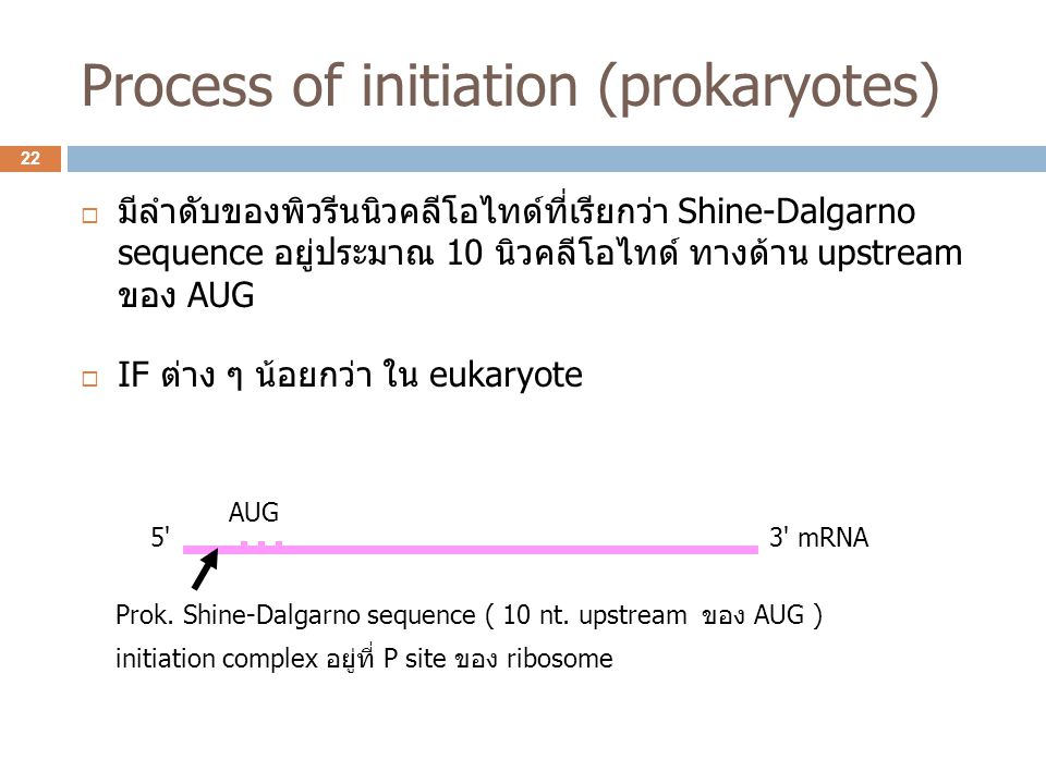 Process of initiation (prokaryotes)