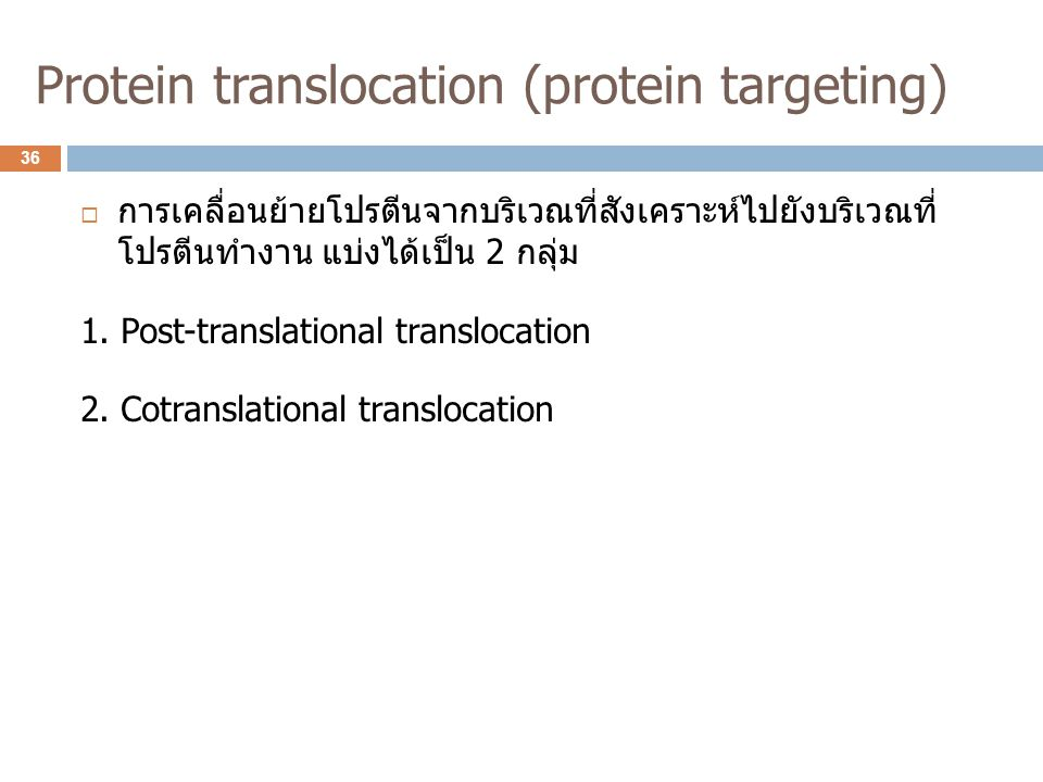 Protein translocation (protein targeting)