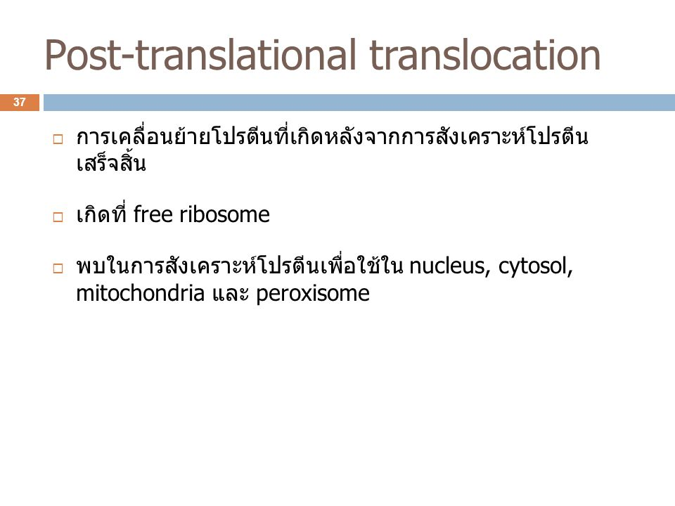 Post-translational translocation