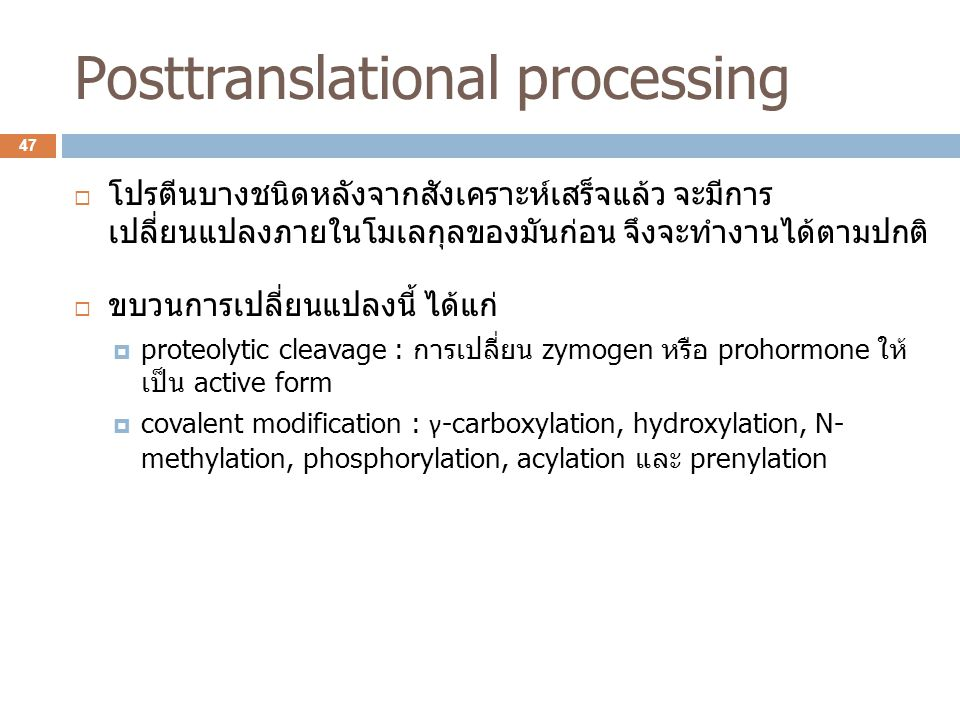 Posttranslational processing