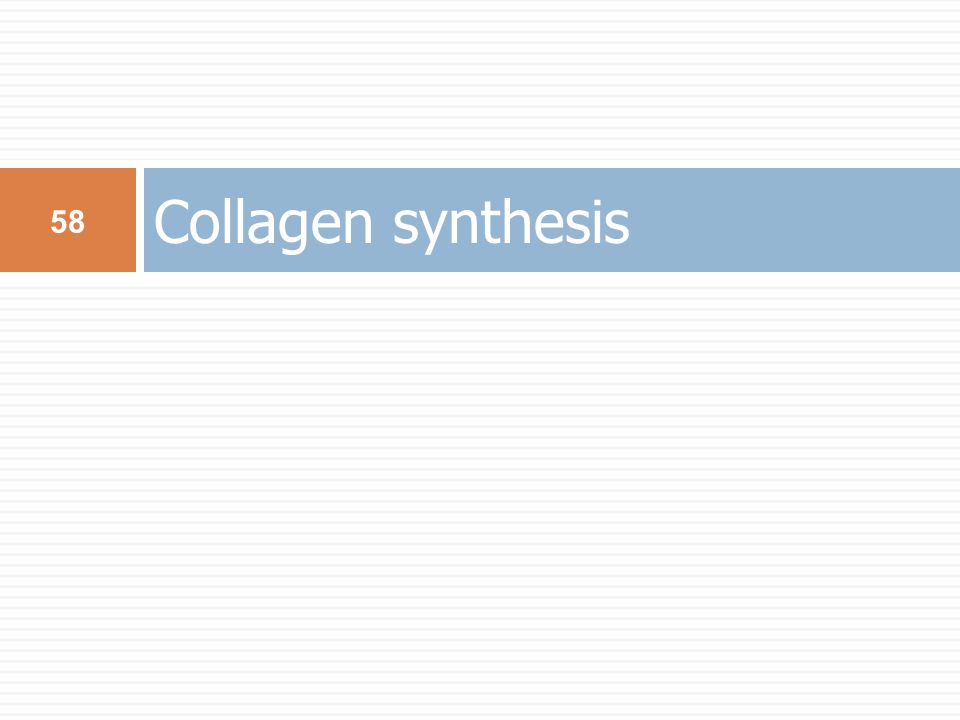 Collagen synthesis