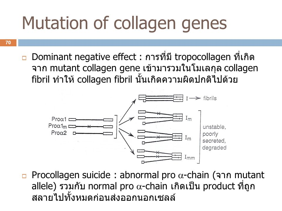 Mutation of collagen genes