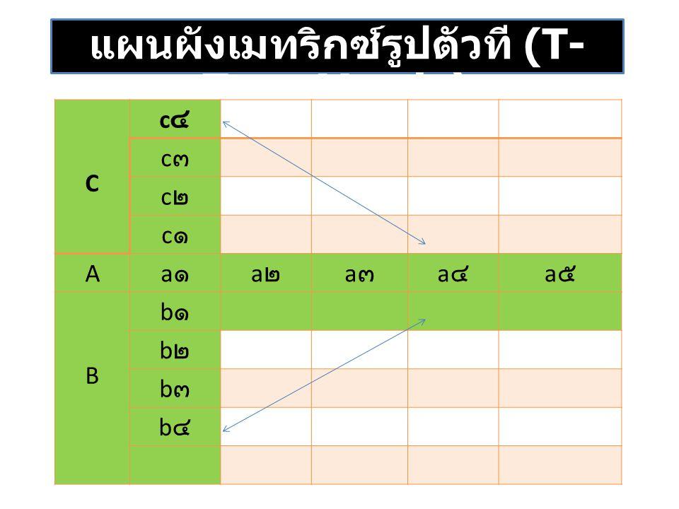 แผนผังเมทริกซ์รูปตัวที (T-Type Matrix)
