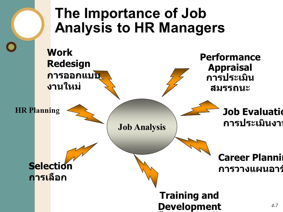 The Importance of Job Analysis to HR Managers
