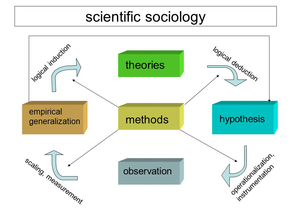 scientific sociology theories methods hypothesis observation