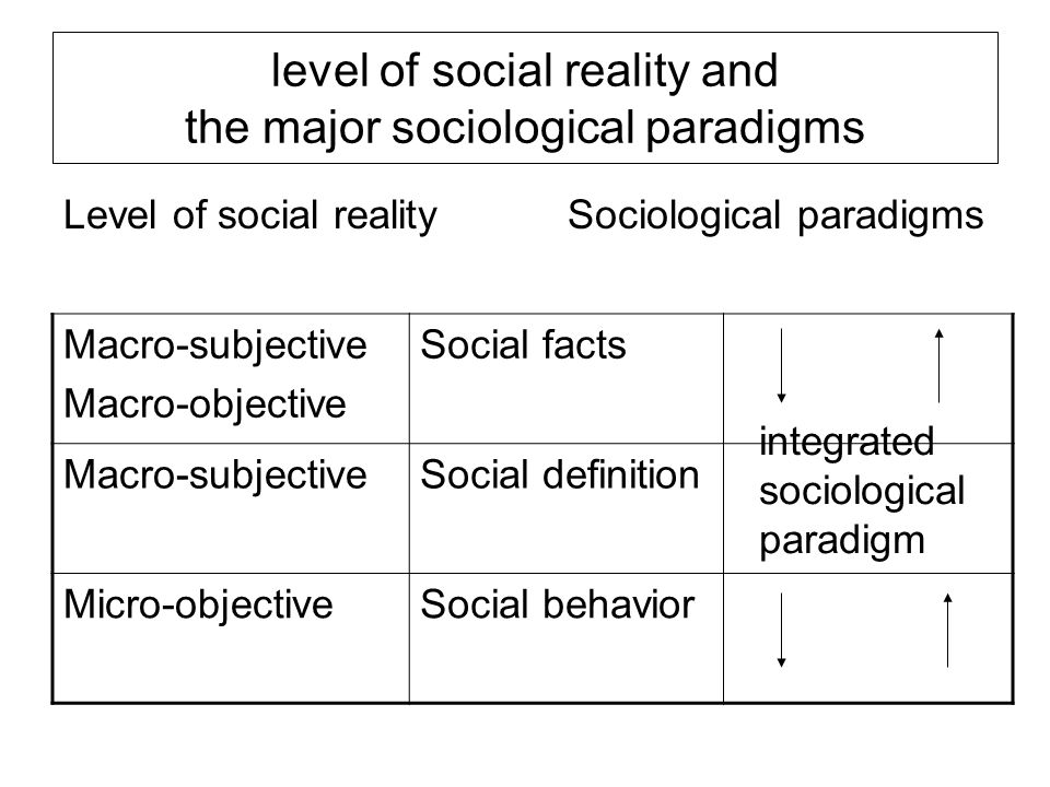 level of social reality and the major sociological paradigms