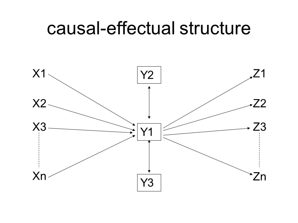 causal-effectual structure