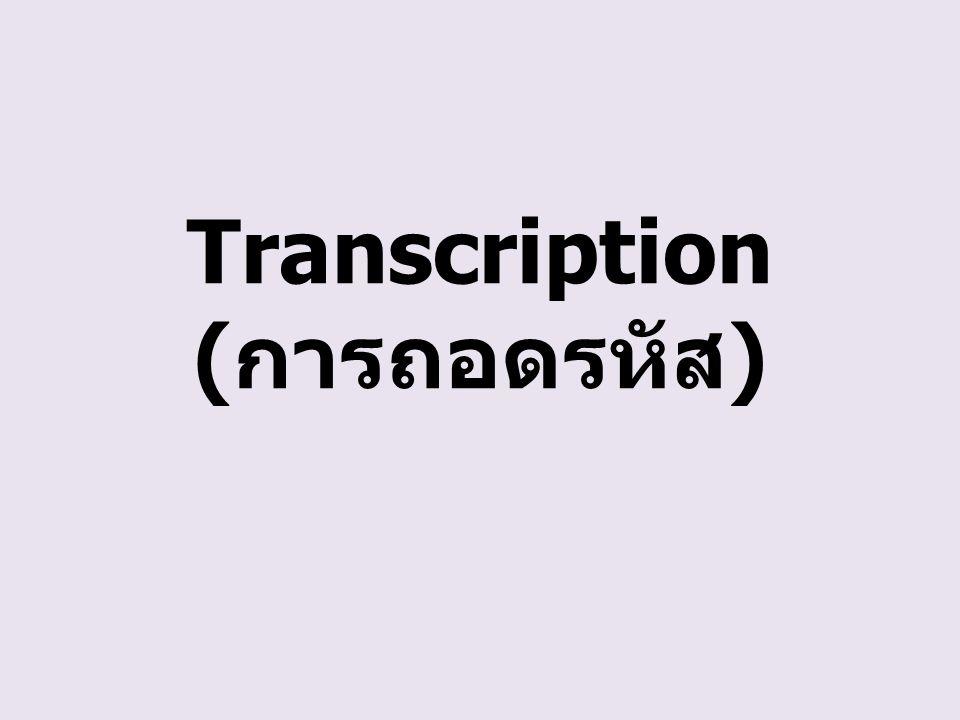 Transcription (การถอดรหัส)