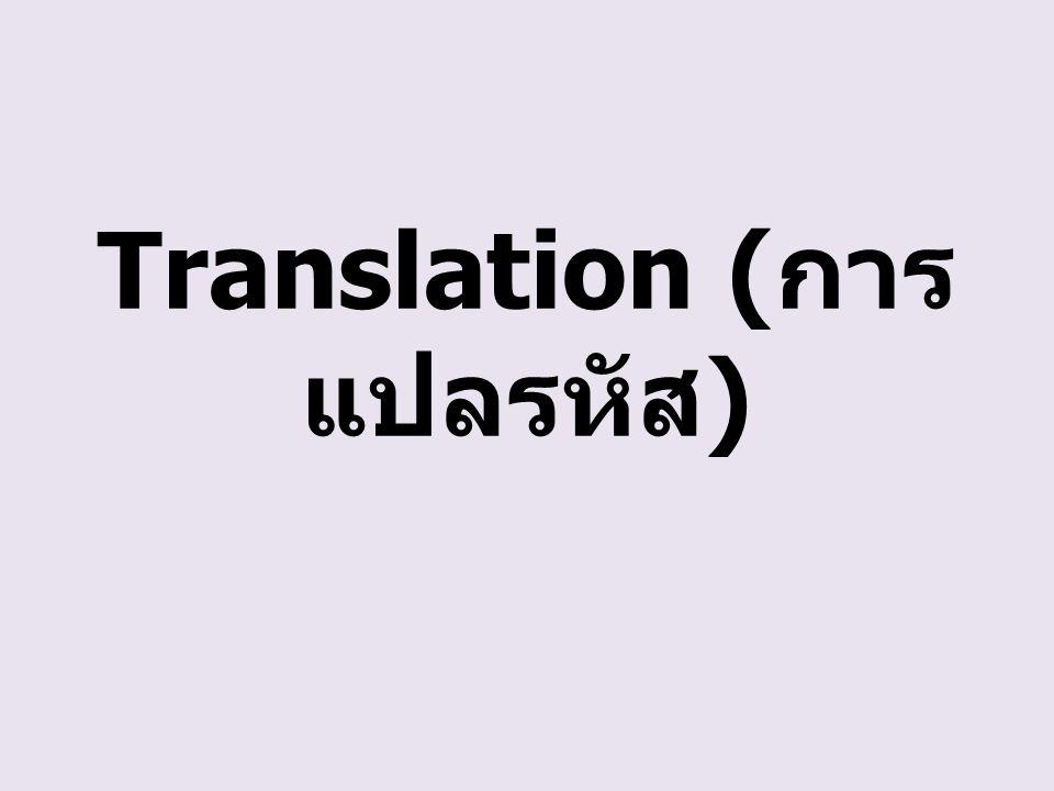 Translation (การแปลรหัส)