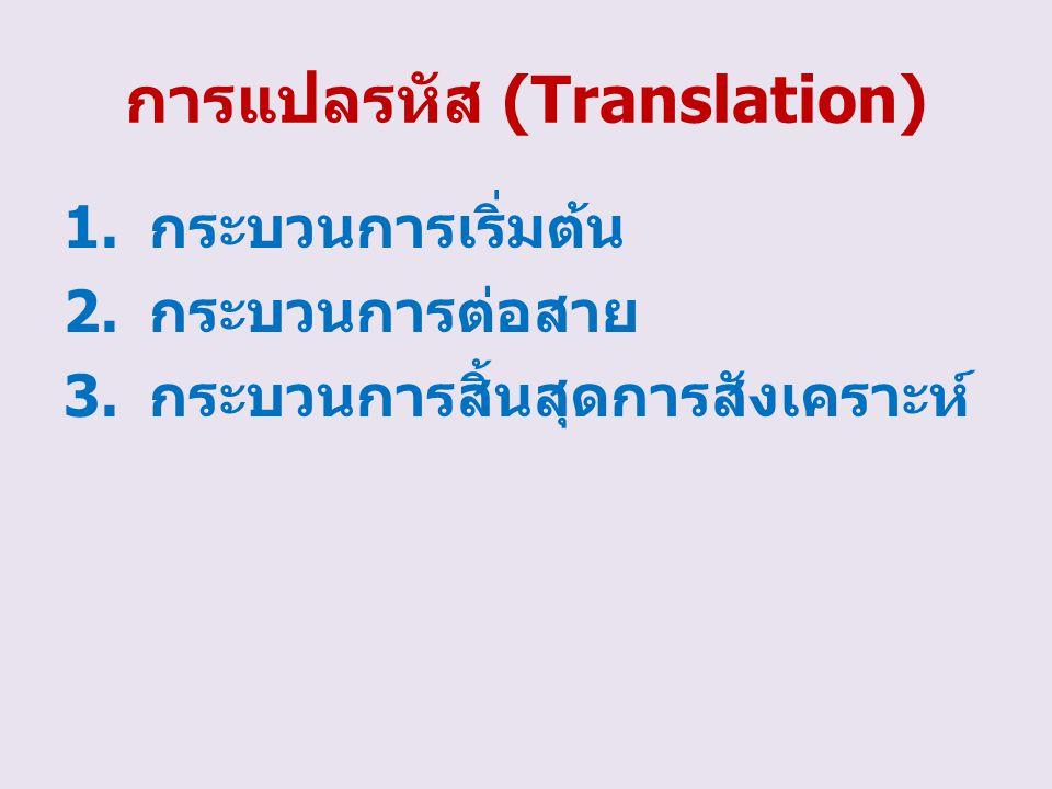 การแปลรหัส (Translation)