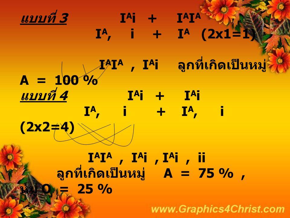 แบบที่ 3 IAi + IAIA IA, i + IA (2x1=1) IAIA , IAi ลูกที่เกิดเป็นหมู่ A = 100 % แบบที่ 4 IAi + IAi IA, i + IA, i (2x2=4) IAIA , IAi , IAi , ii ลูกที่เกิดเป็นหมู่ A = 75 % , หมู่ O = 25 %
