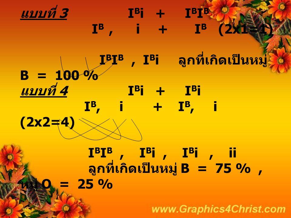 แบบที่ 3 IBi + IBIB IB , i + IB (2x1=1) IBIB , IBi ลูกที่เกิดเป็นหมู่ B = 100 % แบบที่ 4 IBi + IBi IB, i + IB, i (2x2=4) IBIB , IBi , IBi , ii ลูกที่เกิดเป็นหมู่ B = 75 % , หมู่ O = 25 %