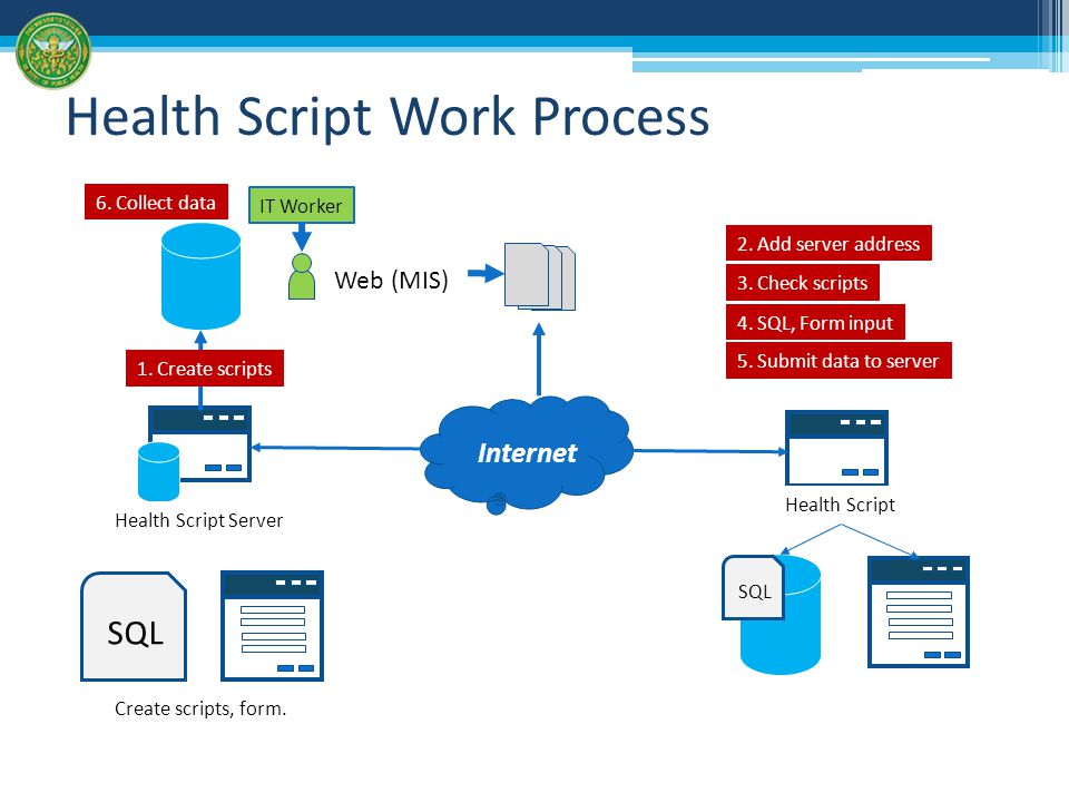 Health Script Work Process