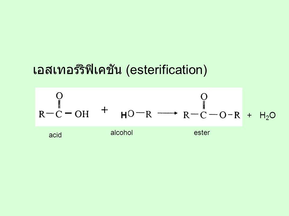 เอสเทอร์ริฟิเคชัน (esterification)