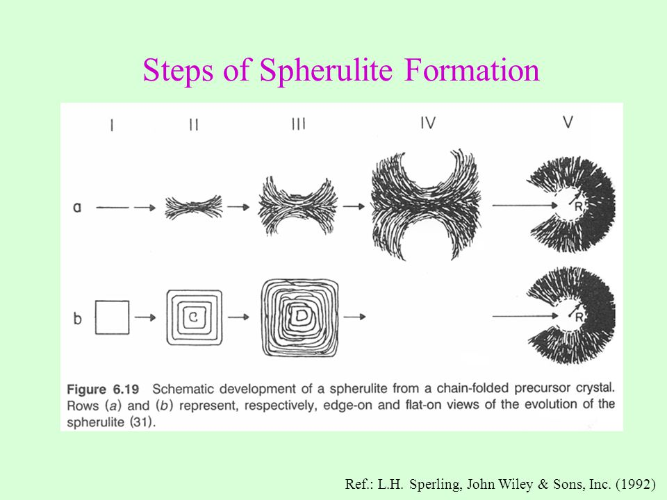Steps of Spherulite Formation
