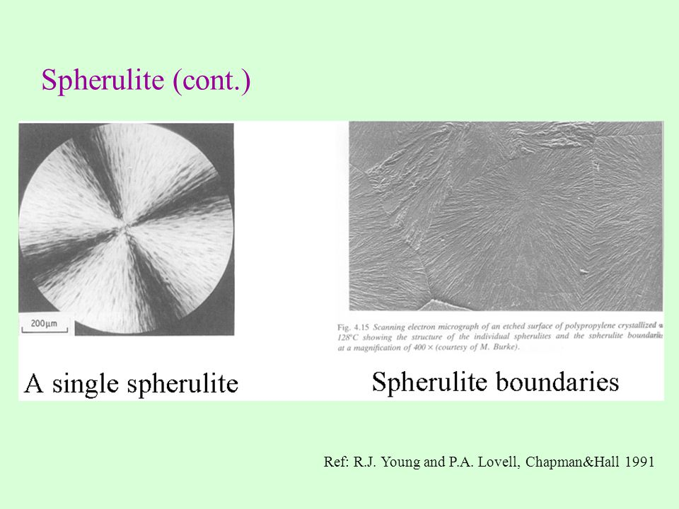Spherulite (cont.) Ref: R.J. Young and P.A. Lovell, Chapman&Hall 1991