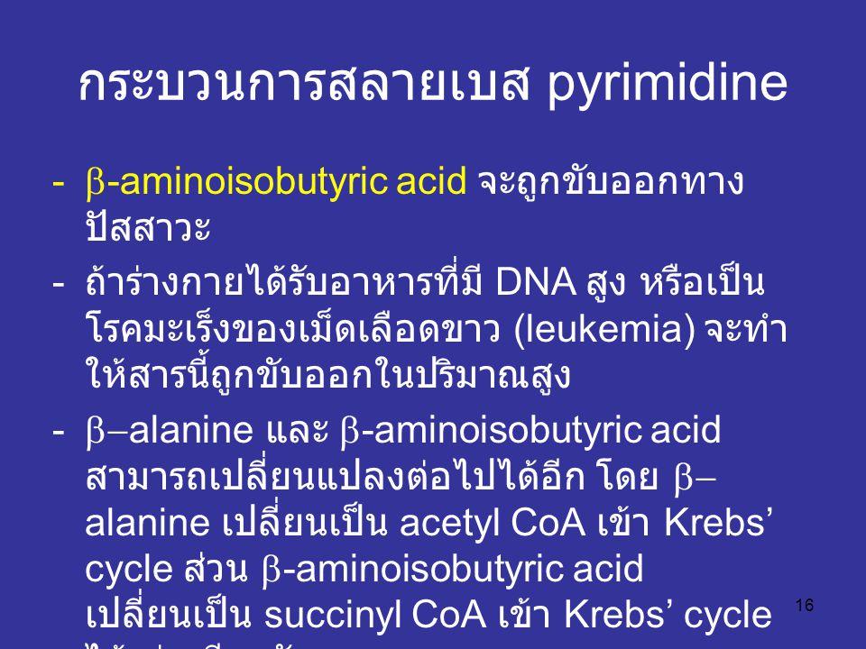 กระบวนการสลายเบส pyrimidine