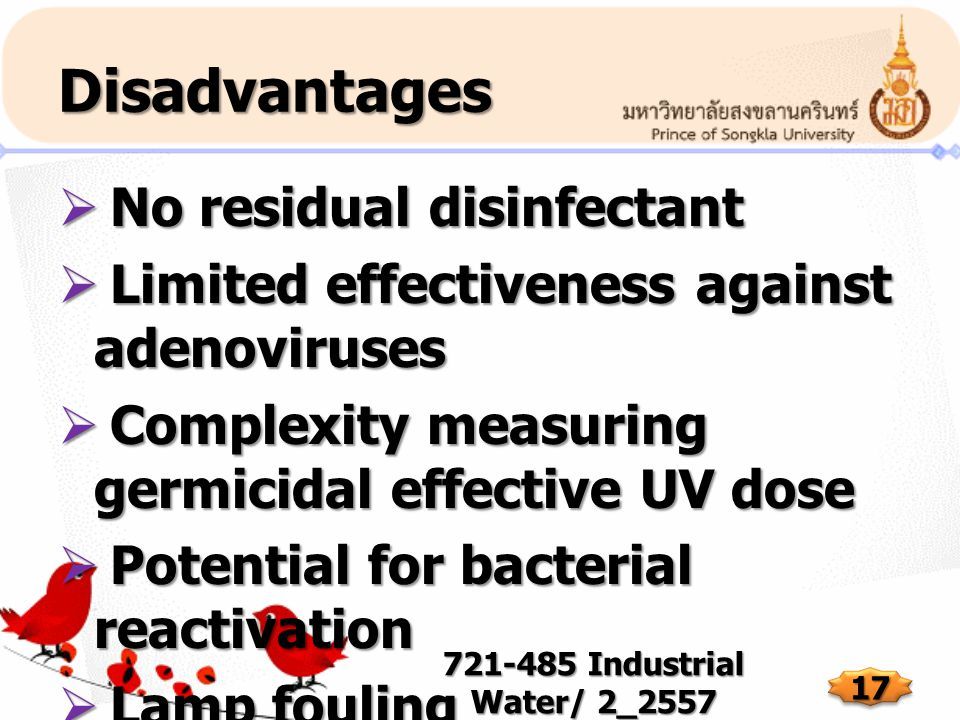 Disadvantages No residual disinfectant