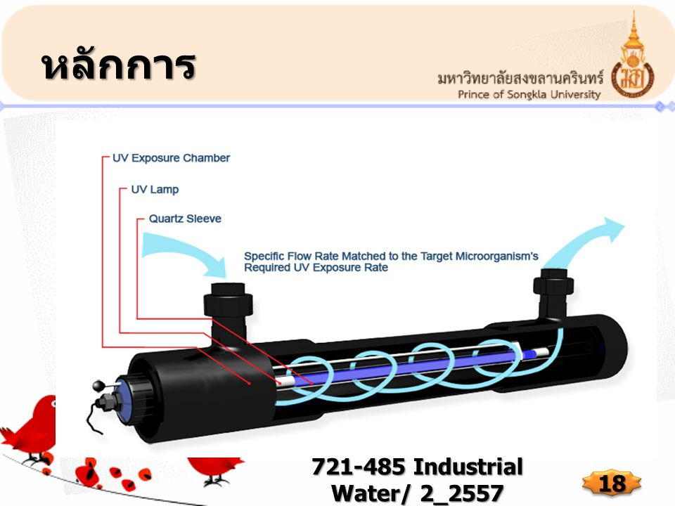 หลักการ 721-485 Industrial Water/ 2_2557