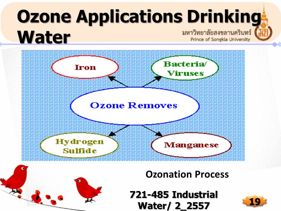 Ozone Applications Drinking Water