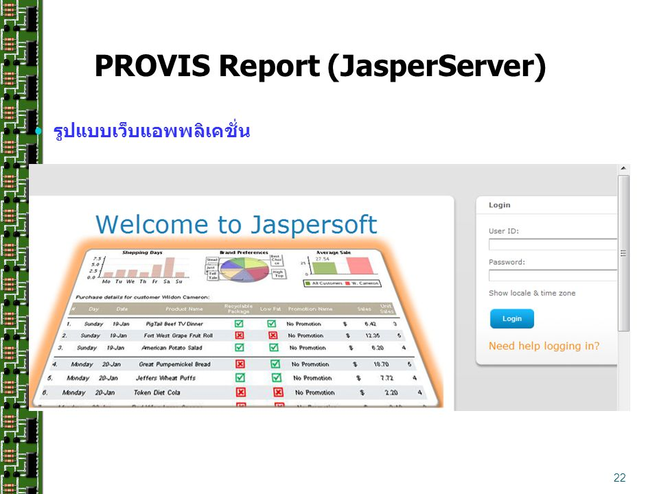 PROVIS Report (JasperServer)
