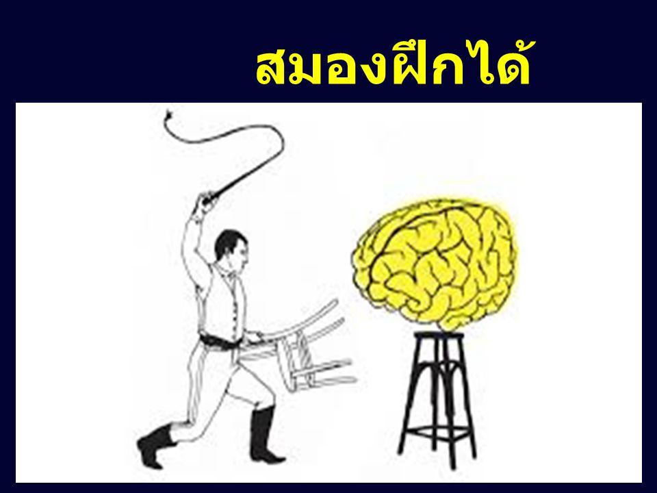 สมองฝึกได้