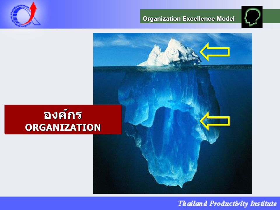 Organization Excellence Model