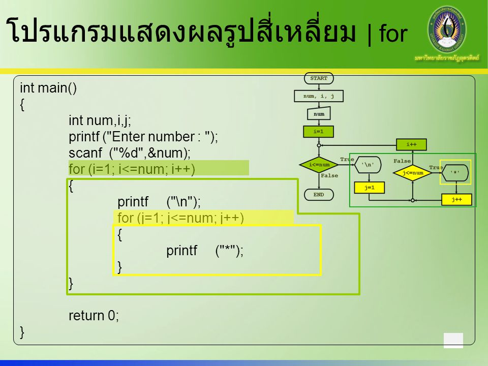 โปรแกรมแสดงผลรูปสี่เหลี่ยม | for ()