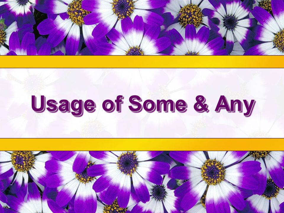 Usage of Some & Any